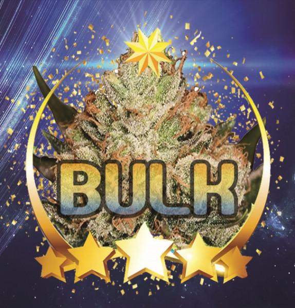 Saturn Hulk Berry
